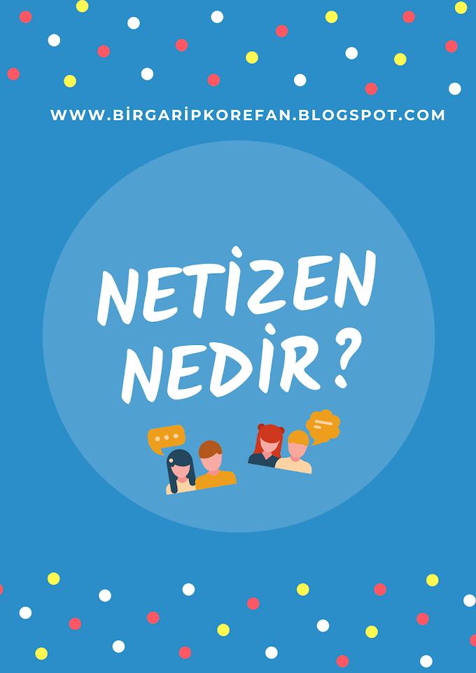 Netizen Nedir?