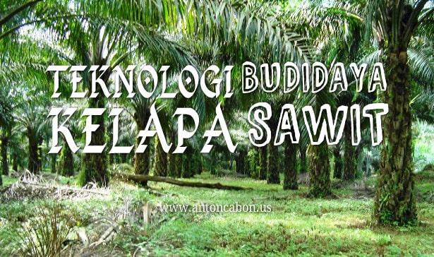 Teknologi Budidaya Kelapa Sawit
