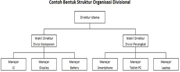 contoh struktur organisasi divisional