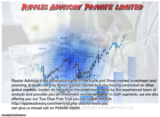 Ripples Advisory Private Limited