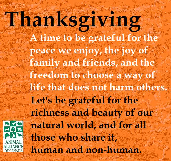 Thanksgiving Wishes Awesome Images, Pictures, Photos, Wallpapers