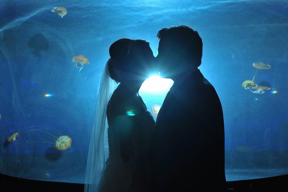 Mandalay Bay Aquarium Wedding - Cashman Photo