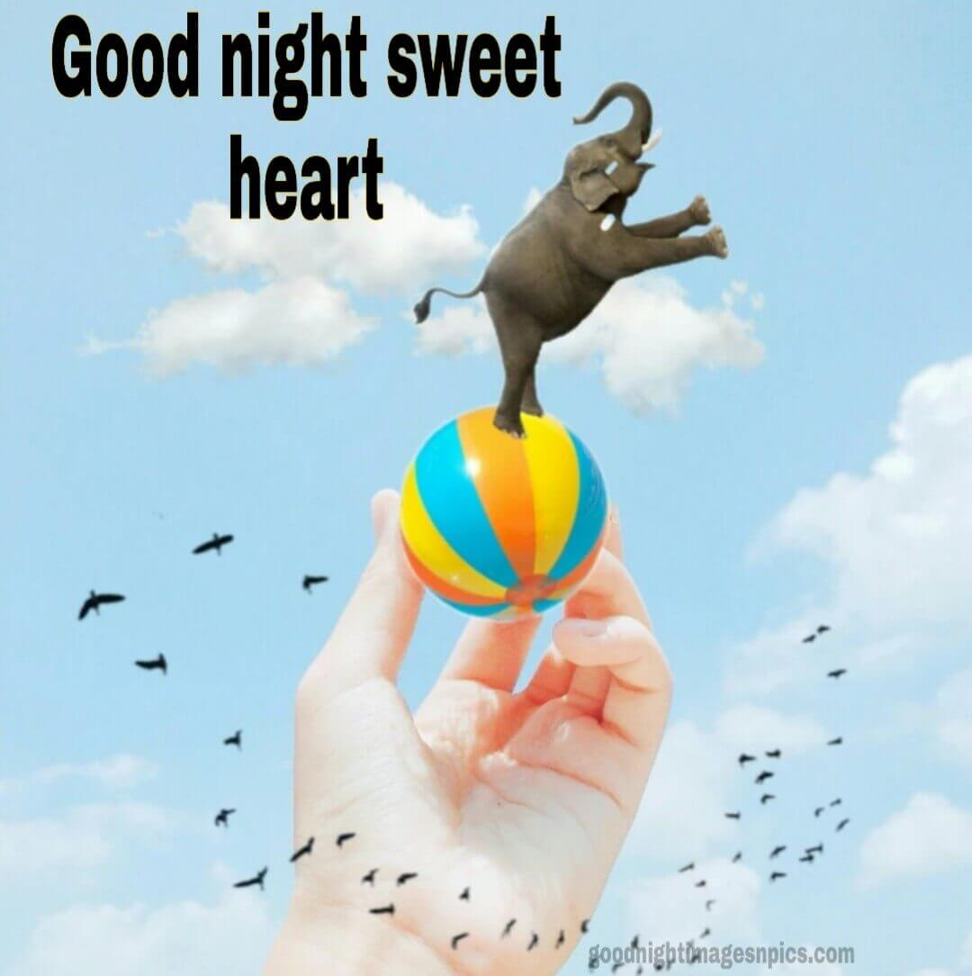 Good Night Sweet Heart