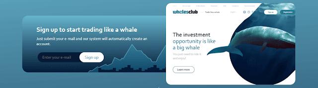 Подробная информация о проекте Whales Club