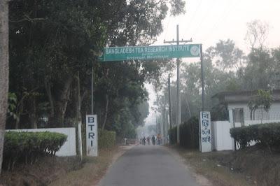 Bangladesh Tea Research Institute