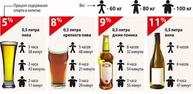Сколько времени алкоголь выводится из организма