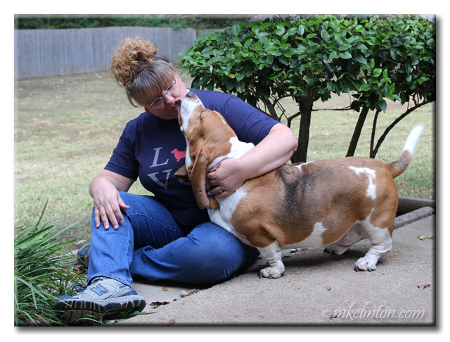 Bentley Basset giving kisses.