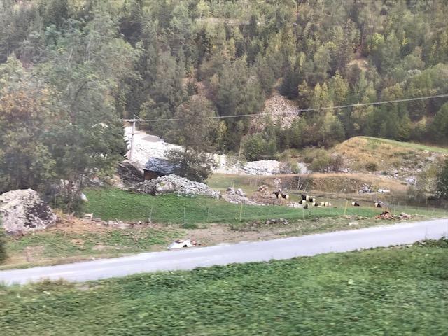 スイスのツェルマットへ行く列車からの眺め