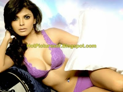 Sherlyn Chopra Unseen Bikini and cleavage collection