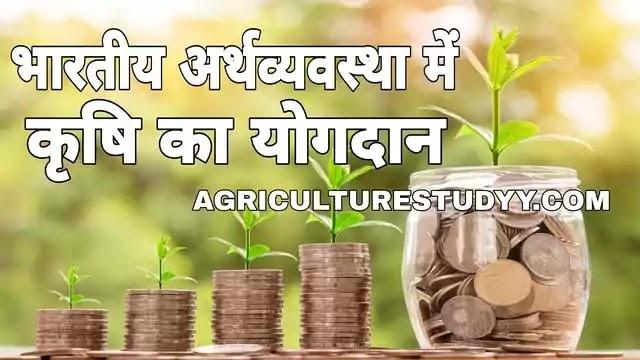 भारतीय अर्थव्यवस्था में कृषि का क्या योगदान है, role of agriculture in Indian economy in hindi, भारतीय अर्थव्यवस्था में कृषि महत्व, कृषि की समस्याएं