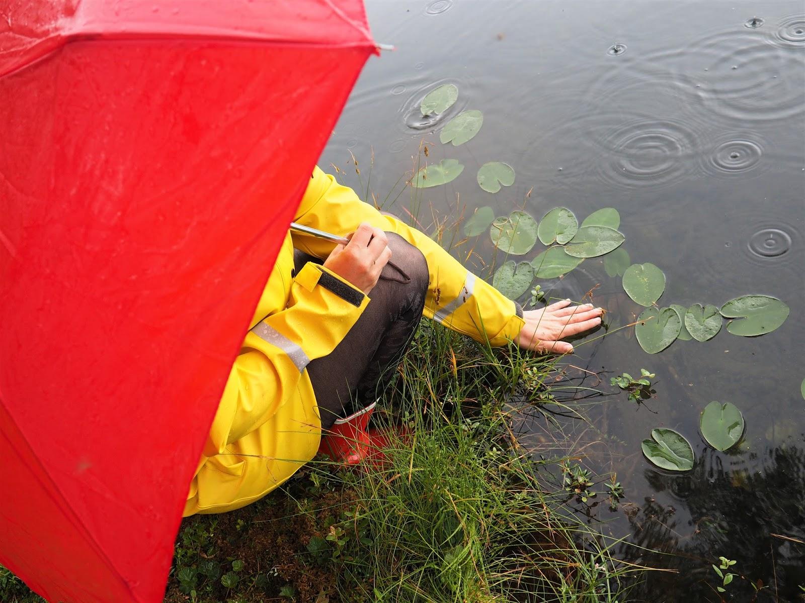 Sadekelin seikkailu lammella, punainen sateenvarjo, lumpeenkukkia, Fia Hollmén