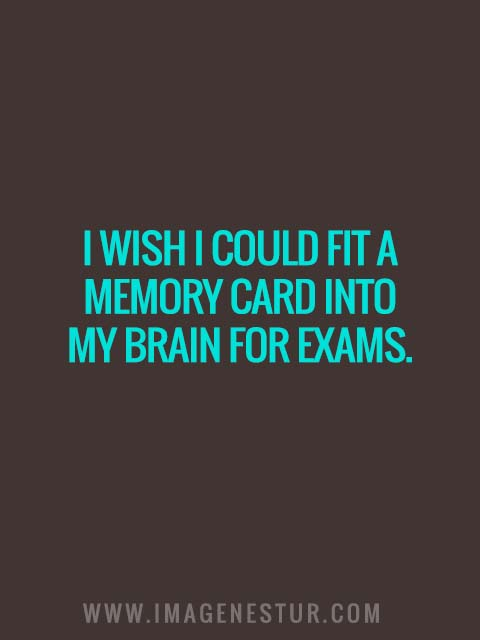 I wish I could fit a memory card into my brain for exams.