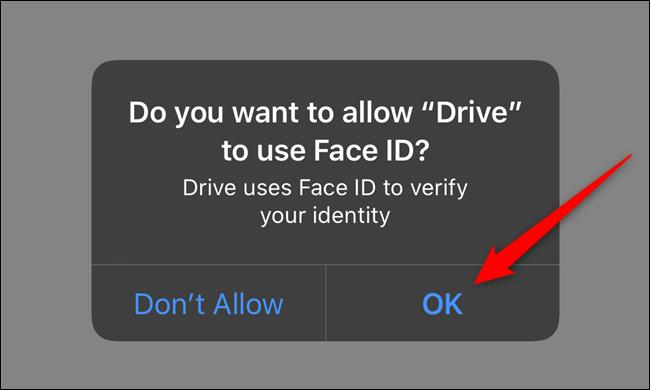 امنح Google Drive الإذن بالوصول إلى Face ID أو Touch ID