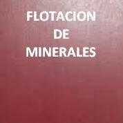FLOTACION DE MINERALES - Bajar pdf