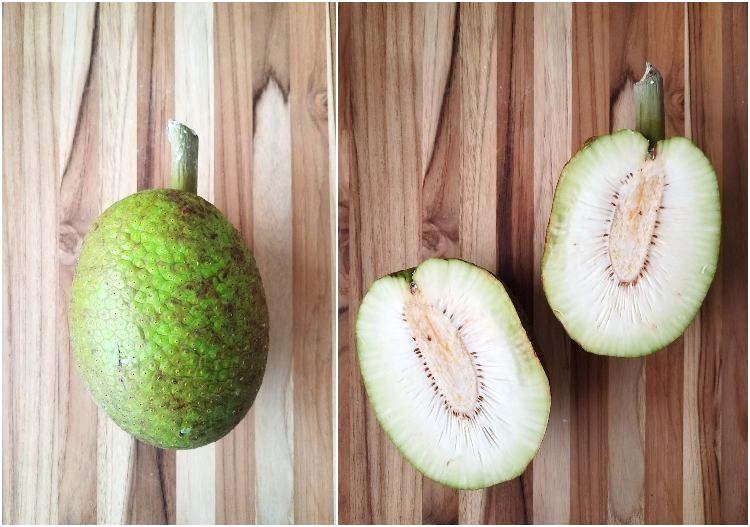 Fruta del árbol de pan: pana o panapén