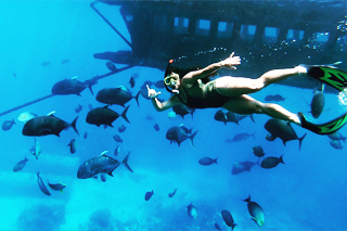 GT Point Snorkeling | Sunia Bali Tour