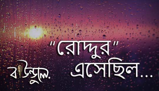 Roddur Esechilo (রোদ্দুর এসেছিল) Bengali Poem
