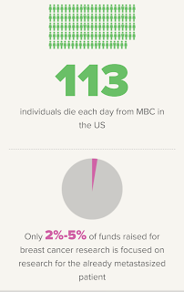 113 Individuals die each day from metastatic breast cancer; only 2% to 5% of breast cancer research is focused on research for the already metastasized.