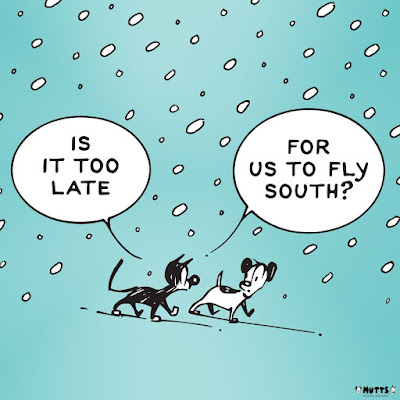 "This is a copy of a Mutts cartoon created by Patrick McDonnell. It was initially posted in celebration of the 2018 Winter Solstice, and shows Earl (the dog) and Mooch (the cat) walking side by side through falling snow — while Mooch (who is on the left)  asks, ""Is it too late for us to fly south?"""