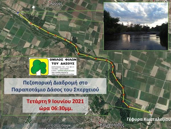 Τετάρτη 9 Ιουνίου στις 6.30 μ.μ, - Πεζοπορική διαδρομή στο παραπόταμιο δάσος του Σπερχειού