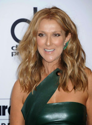 Celine Dion smoulders in a leather dress at the 2015 Billboard Music Awards