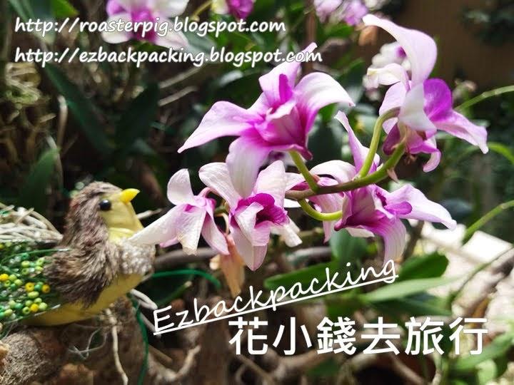 香港動植物公園蘭花園