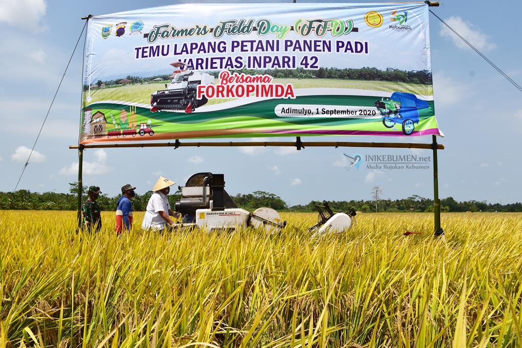 Ditengah Pandemi Covid-19, Kebumen Surplus 123.529,4 Ton Beras