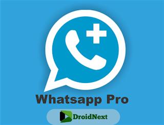 Whatsapp Pro Mod Full APK Terbaru Anti Banned Download untuk Android