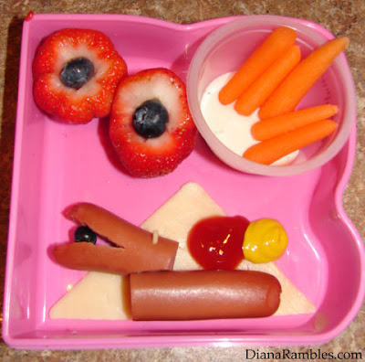 my first bento lunch