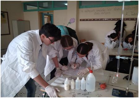 Το 1ο ΓΕΛ Ναυπλίου στον Πανελλήνιο Διαγωνισμό Φυσικών Επιστημών EUSO 2020
