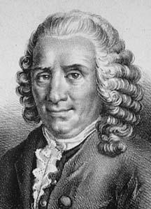 Carolus Linnaeus - Bapak Taksonomi Modern