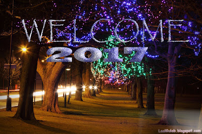 Welcome 2017 HD Wallpaper Free