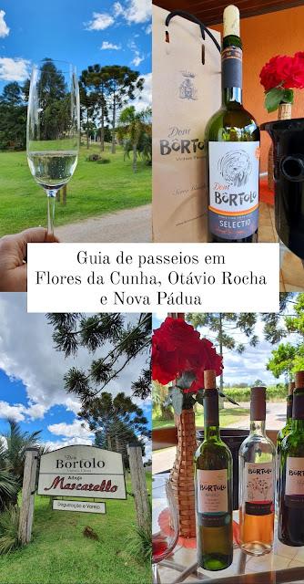 O que fazer em Flores da Cunha