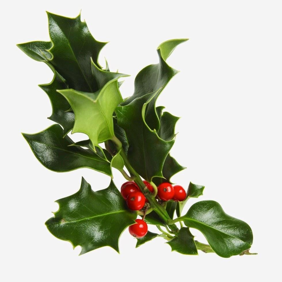 El color comunica significado del arbol de navidad for Cuales son los adornos navidenos