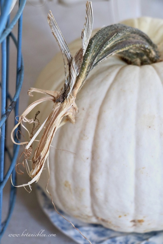 Fall blue and white cottage style small foyer includes large white pumpkin with twisty stem
