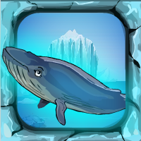 Games4Escape Blue Whale Rescue Walkthrough
