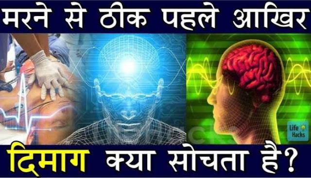 Rochak Jankari #8 मरने से पहले इंसानी दिमाग क्या सोच रहा होता है? marne se pahle insaan ka dimag kya soch raha hota hai?