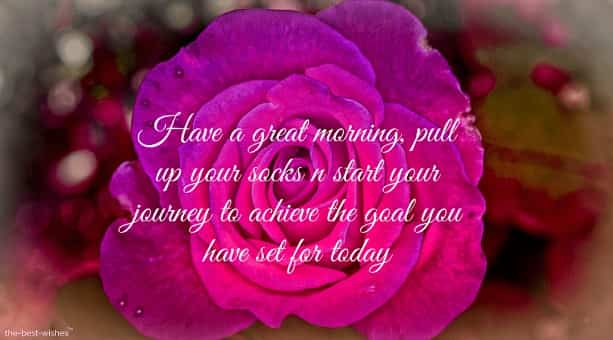 have a great morning pull up your socks and start your jouney to achieve the goal you have set for today