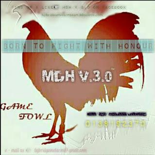 MDH V 3 0