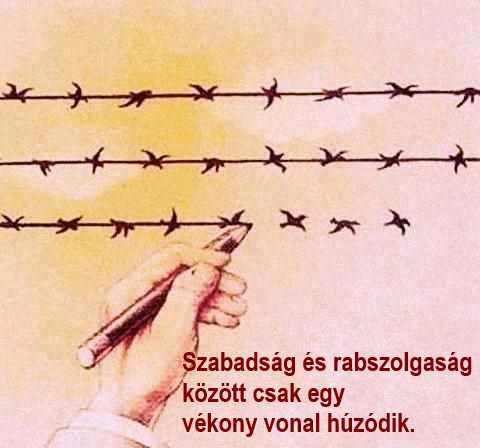 1 hét egyetlen szabadság)