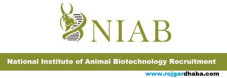 NIAB Recruitment 2017 - National Institute of Animal