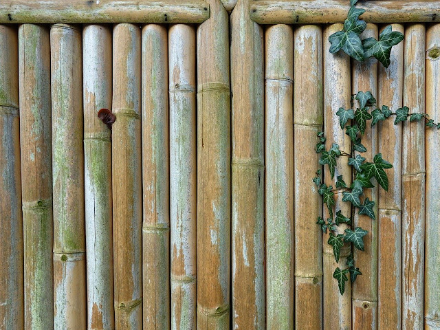 Agar Pagar Bambu Awet Dan Tidak Cepat Rusak Ikuti 3 Saran Ini Arafuru