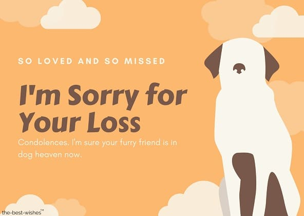 condolences messages for loss of dog