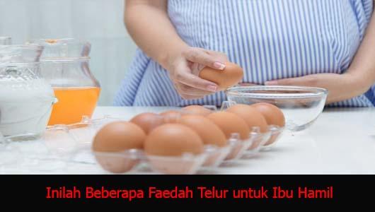 Inilah Beberapa Faedah Telur untuk Ibu Hamil