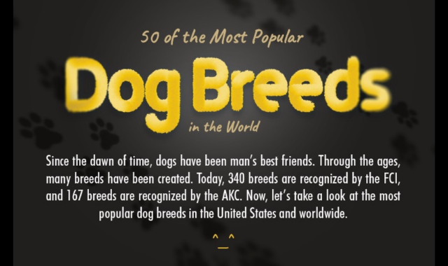 The World's 50 Most Famous Dog Breeds