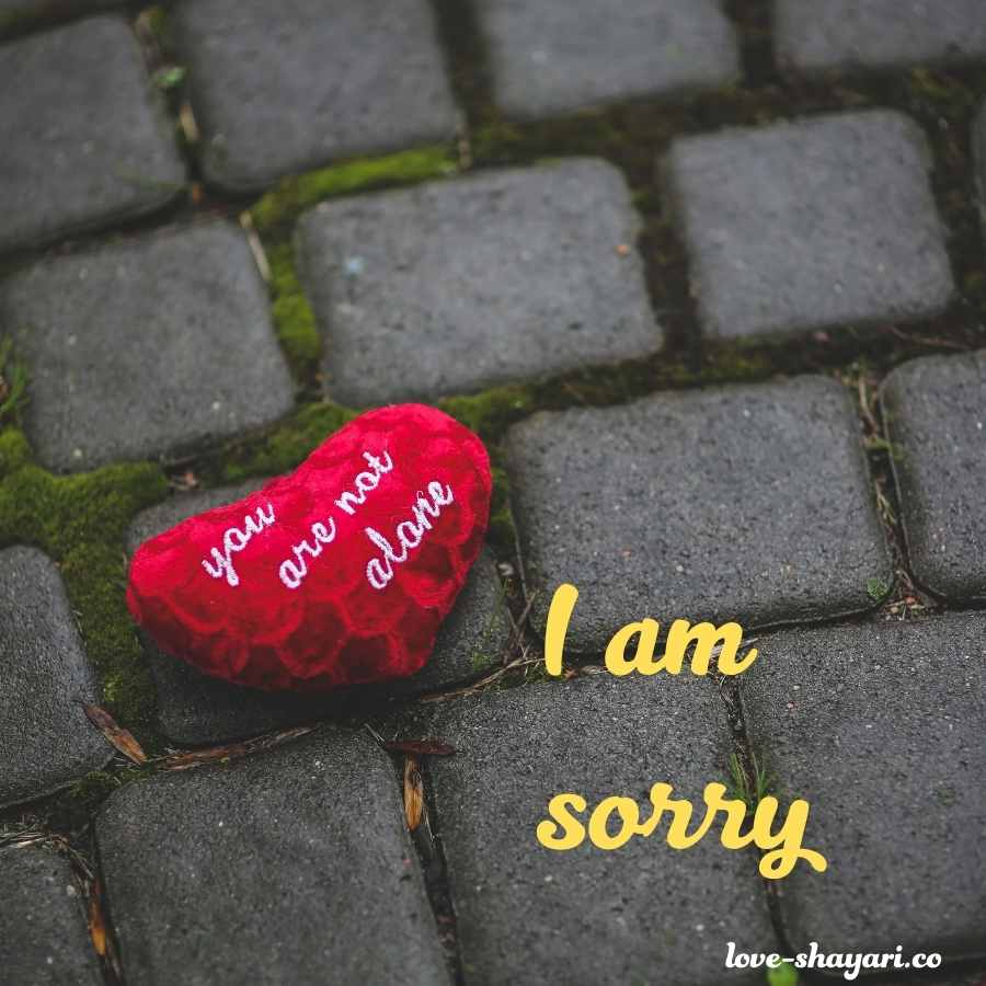 sorry hd images for lover