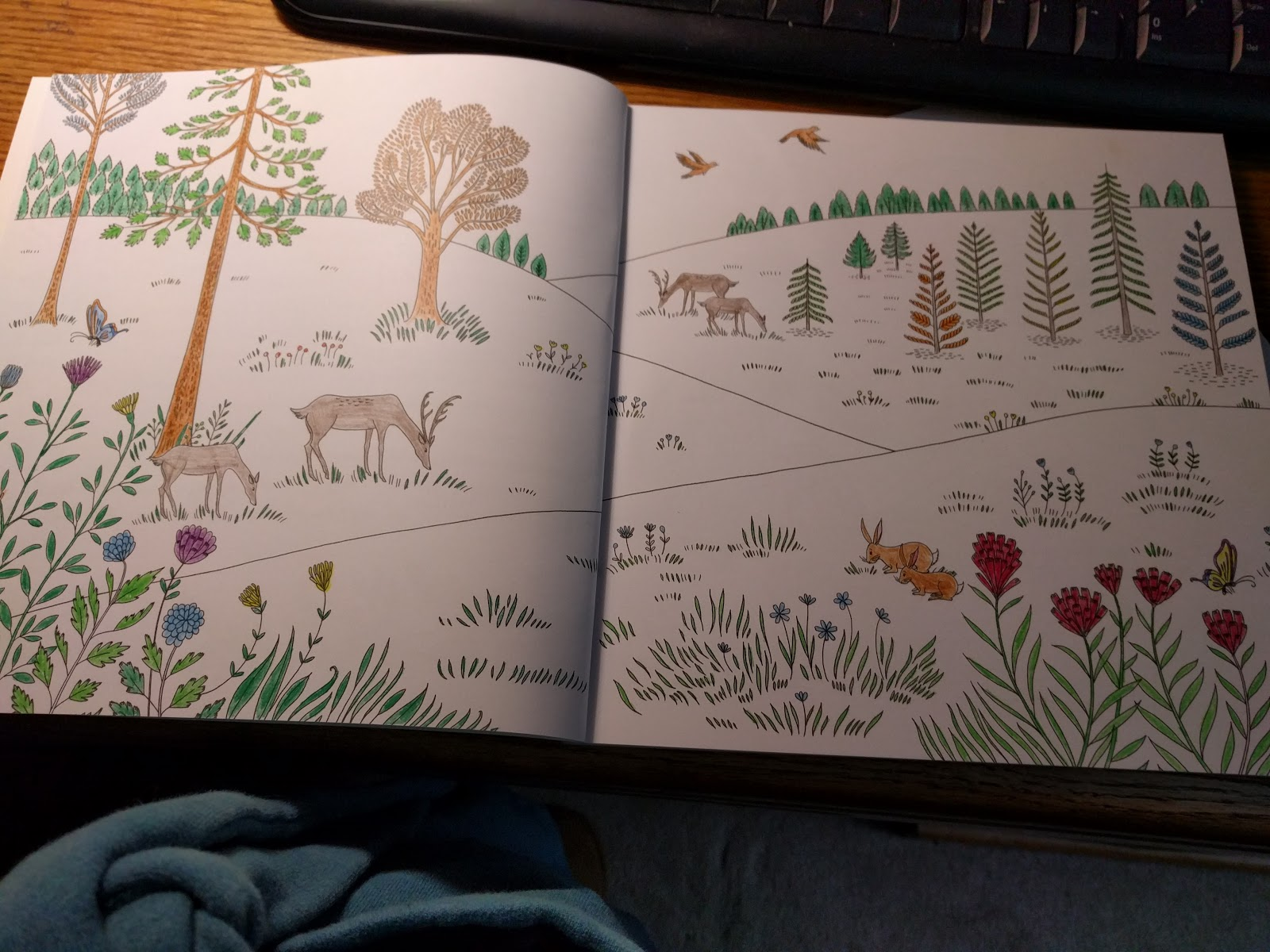 Following 31 Book Review Wonders Of Creation Illustrations To