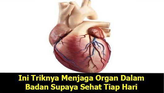 Ini Triknya Menjaga Organ Dalam Badan Supaya Sehat Tiap Hari