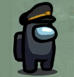 سكن قبعة شرطي