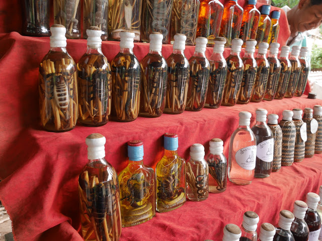 snake whisky and snake wine; traditional Laotian alcohol in Luang Prabang, Laos